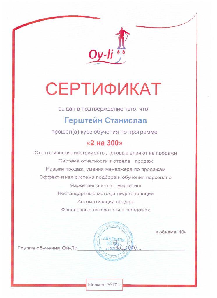 Герштейн С.Е. академия Ол-ли